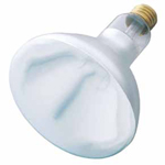 Shat-R-Shield 01725I-250R40/White - Clear Infra-Red Heat Lamp Bulbs